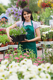 Cheerful florist carrying out tray of plants