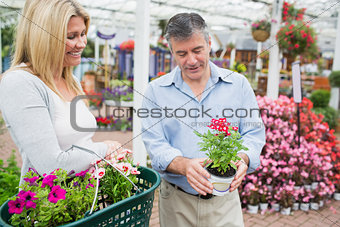 Couple carrying a basket while looking at a flower