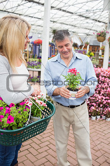 Couple deciding on a plant