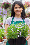 Gardener carrying plants in boxes