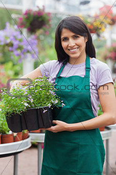 Smiling assistant carrying flower boxes