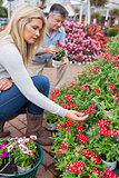 Couple searching red flowers in store