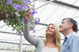 Happy couple looking at hanging flower basket