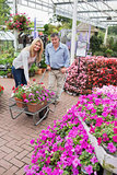 Smiling couple putting flowers in trolley