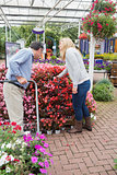 Couple looking for plants with a trolley