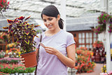 Woman looking for the price of the plant