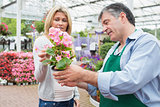 Woman talking to employee about plant