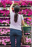 Woman taking a flower from shelves