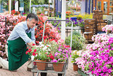 Man unloading flowers from trolley