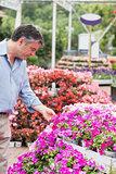 Man touching a little flower