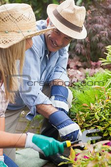 Smiling couple gardening