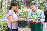 Woman carrying a basket while buying flowers and talking to employee