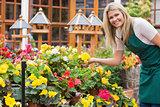 Garden center worker holding yellow flower