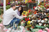 Couple discussing which flowers to buy