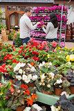 Couple choosing purple flowers