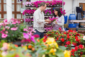 Couple discussing purple flowers