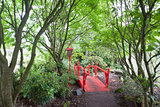 Red Japanese style bridge in forest