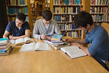 Students doing assignments in library