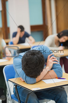 Boy sleeping at desk