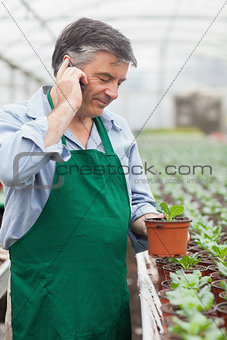 Greenhouse worker holding seedling and phoning