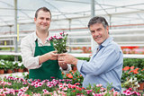 Employee giving potted plant to customer in greenhouse