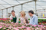 Family choosing a flower with employee in garden center