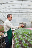 Man taking notes on seedlings in nursery
