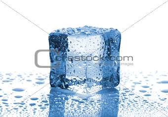 Single melted ice cube