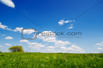 green grass under deep blue sky with clouds