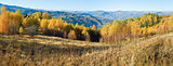 Autumn mountain forest panorama