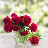 bouquet of peonies on a garden table