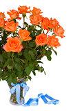 fresh orange  roses in vase