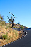 curved asphalt road in Andalusia
