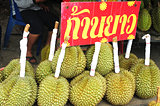 Durian fruits in Thailand