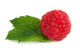 Ripe red raspberry