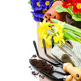 Garden tools and colorful flowers