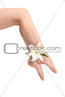 Beautiful woman legs holding a white flower
