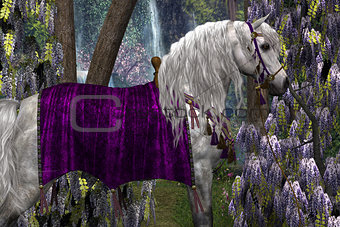 Arabian and Wisteria