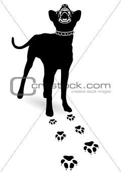 Caution dangerous dog
