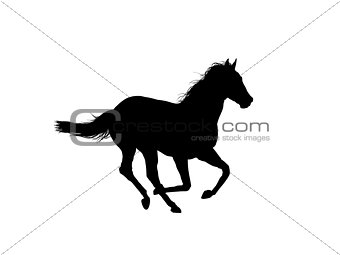 Horse running outline