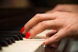 Pianist hands