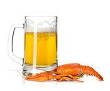 Beer mug and boiled crayfish