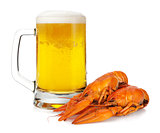 Beer mug and boiled crayfishes