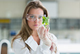 Woman standing at the laboratory holding a glass with plant