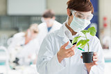 Woman standing at the laboratory holding a plant adding chemical to soil
