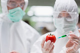 Students experimenting with a tomato