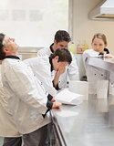 Frustrated Chef's discussing the menu