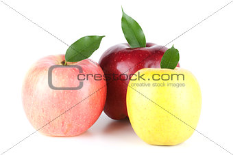 Three Ripe Apples