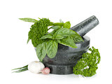 Fresh flavoring herbs and spices in mortar