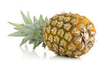 Fresh juicy pineapple